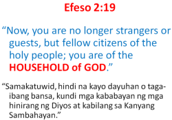 cfc - households - efeso 2 19